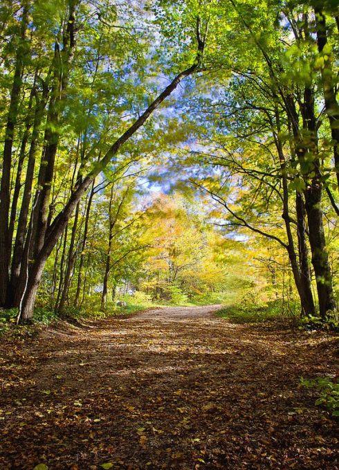 autumnrdoct1