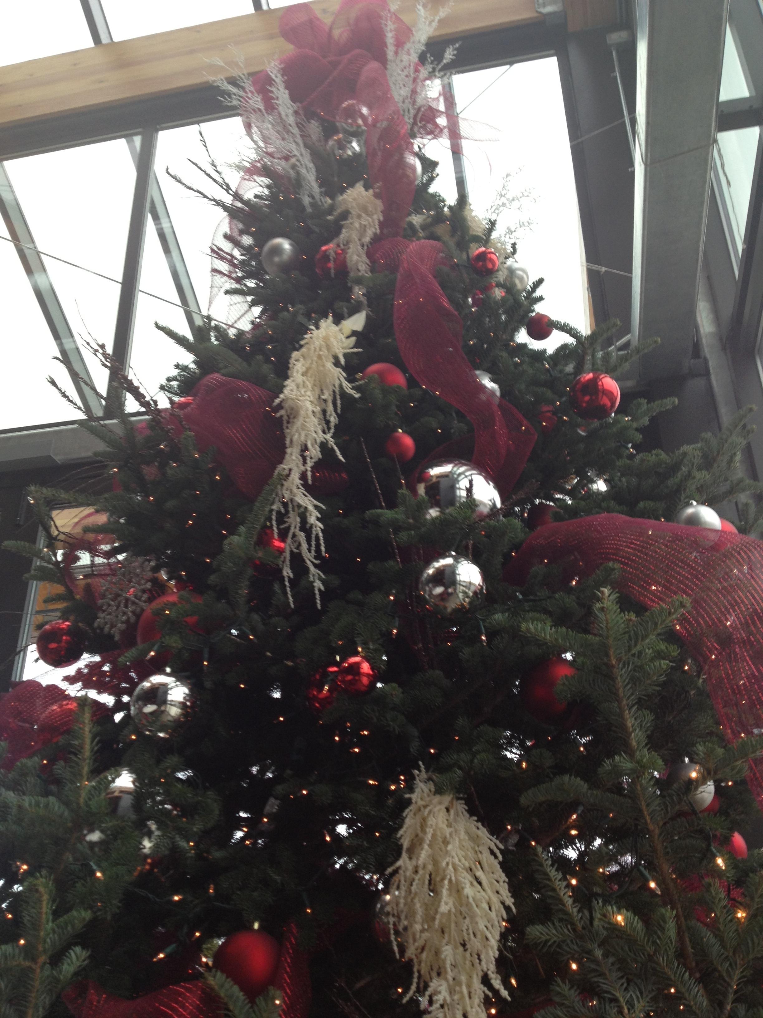 Christmas tree in Crocus City 2018 - 2019 23